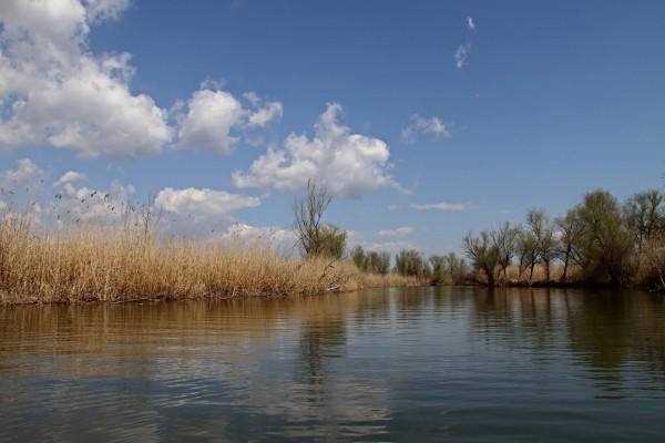 Agua de un río