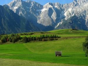 Vista de una cabaña en el valle verde