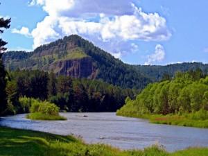 Un río fluyendo en la naturaleza