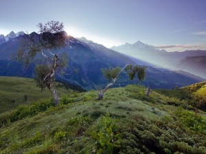 Postal: Rayos de sol asomando tra la montaña
