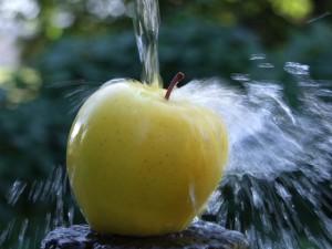 Postal: Un chorro de agua sobre una manzana