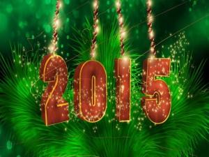 """Festejando la llegada del """"Nuevo Año 2015"""""""