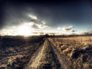 Postal: Camino de tierra campestre