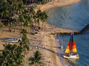 Postal: Playa con verdes palmeras