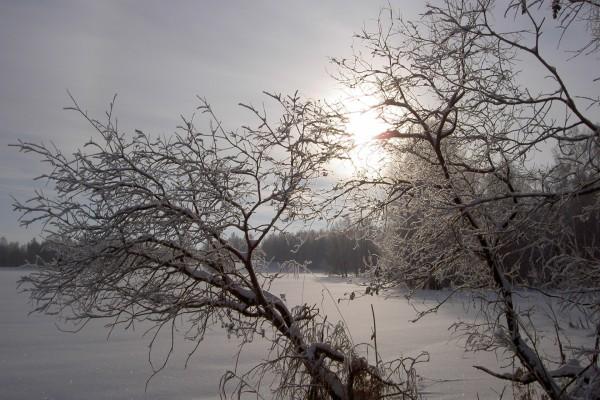 Un bello lugar cubierto de nieve