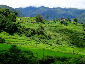 Postal: Paisaje verde en Bhután