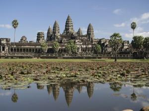 Postal: Nenúfares en el templo Angkor Wat