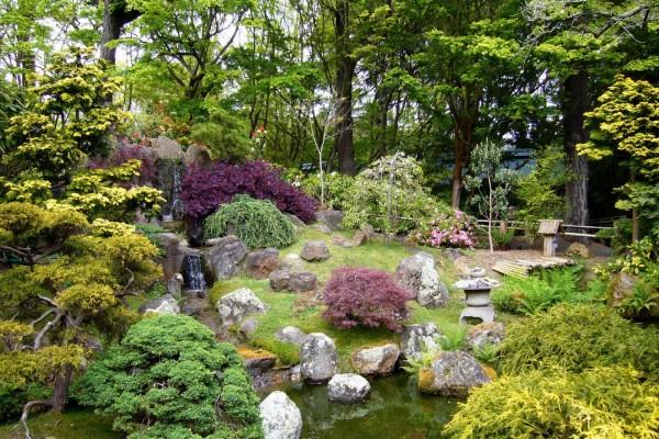 Un bonito jardín japonés con una pequeña cascada