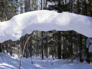 Arco de nieve