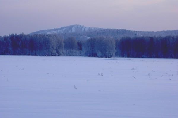 Pradera cubierta de nieve