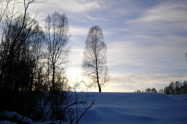 Nieve en una fría mañana