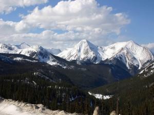 Nieve bajo los pinos y en las montañas