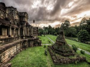 Postal: Verdor en el templo Angkor Wat