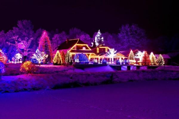 Casa y árboles iluminados esperando la Navidad
