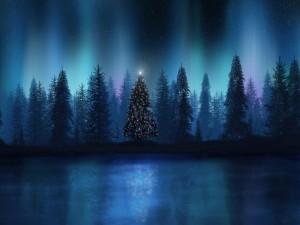 Árbol de Navidad en el bosque