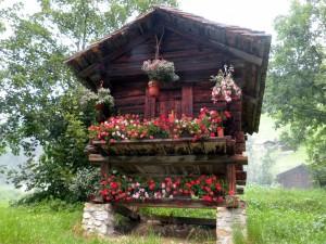 Postal: Pequeña cabaña con flores