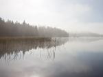 Una mañana muy brumosa en el lago