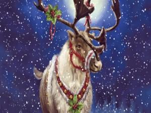 Postal: Un reno navideño