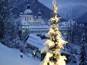 Un árbol de Navidad iluminado en una noche fría