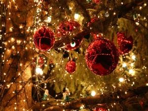 Árbol adornado con luces y bolas rojas de Navidad