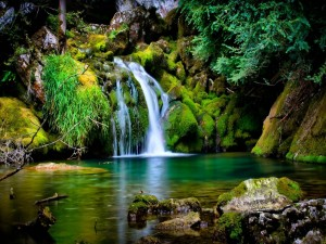 Postal: Una cascada entre rocas cubiertas de musgo