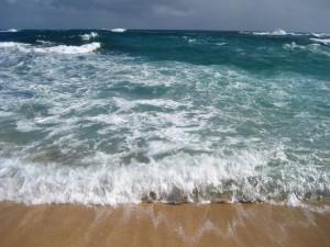 Grandes olas llegando a la playa