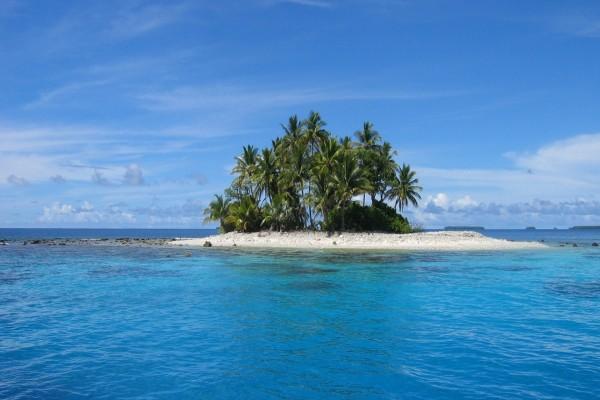 Pequeña isla con palmeras en el mar