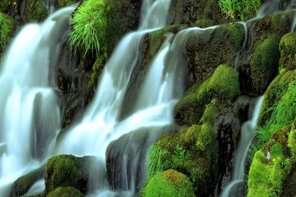 Cascada en una pared de roca con musgo