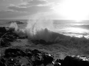 Postal: Mar en blanco y negro