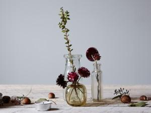 Postal: Flores en tarros de cristal