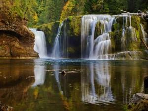 Postal: Bellas cascadas en un entorno verde