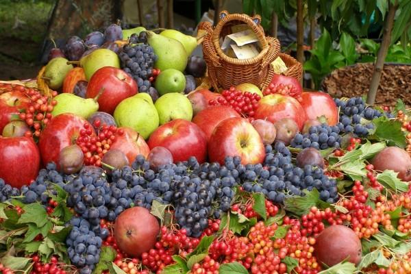 Venta de ricas frutas