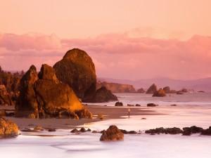 Postal: Contemplando la belleza del mar