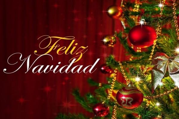 ¡Feliz Navidad! junto al árbol