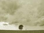 Hombre junto a un árbol