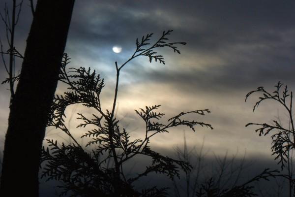 La luna entre nubes al anochecer