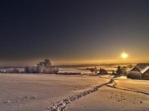Postal: Mañana de invierno silenciosa