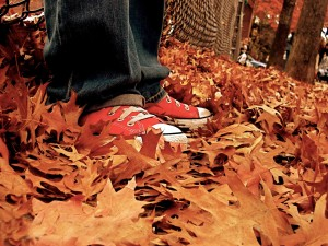 Postal: Pisando hojas otoñales