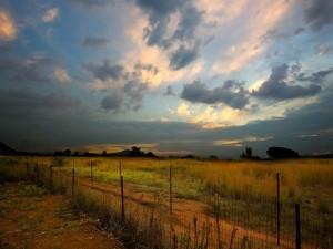 Amanecer nuboso sobre un campo