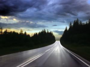 Postal: Carretera entre pinos
