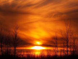 Postal: Cielo anaranjado cubierto de nubes