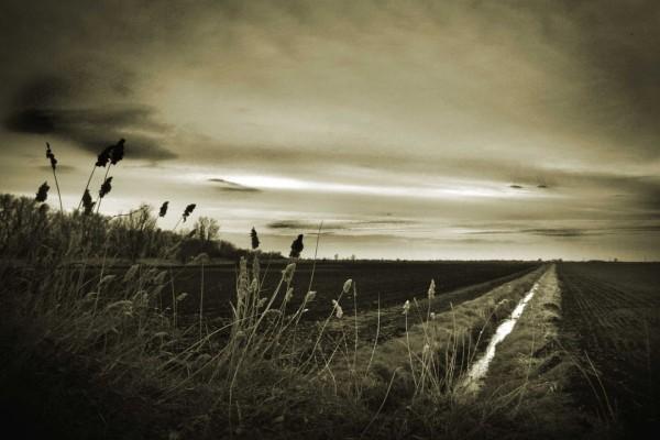 Un paisaje campestre