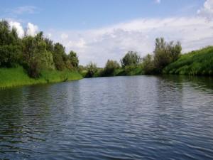 Sobre el cauce de un río
