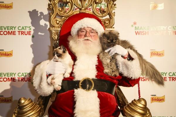 Santa Claus con dos gatos