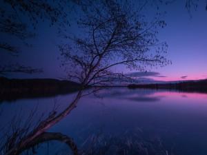 El sol se va asomando y se refleja en las aguas del lago