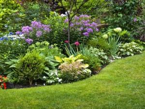 Jardín con esplendorosas y delicadas flores