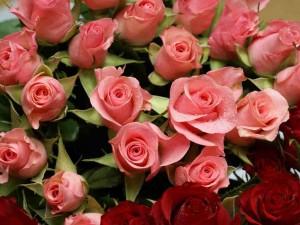 Postal: Romántico ramo de rosas