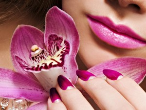 Postal: Belleza púrpura