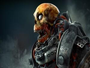 Cráneo de un guerrero