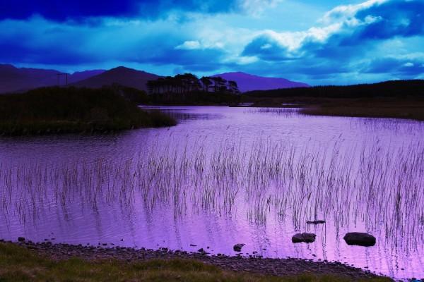 Río color púrpura al amanecer